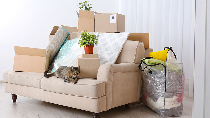 Effective Packing Tips to Help in Moving Across the Country
